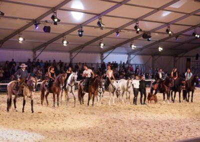 Mostra Internazionale del Cavallo, Città di Castello